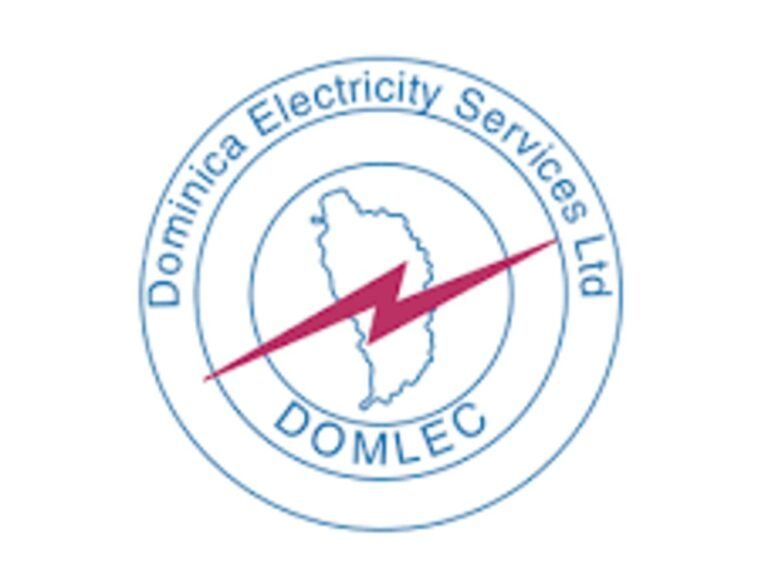 DOMLEC makes 12 staff redundant
