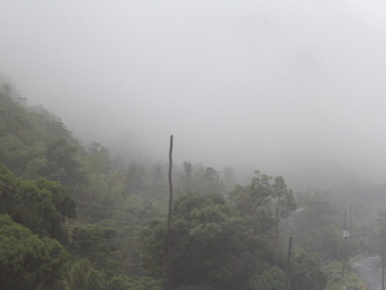 TROUGH SYSTEM AFFECTING DOMINICA